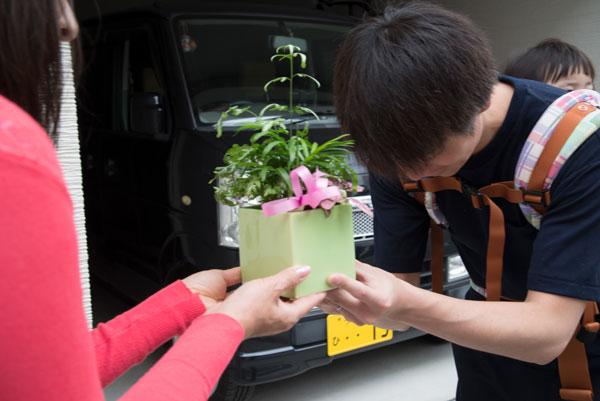 新築のお祝い観葉植物